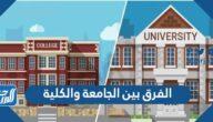 ما الفرق بين الكلية والجامعة