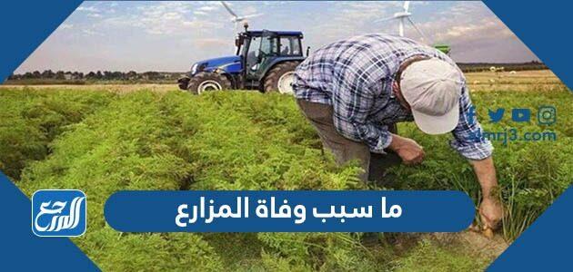 ما سبب وفاة المزارع