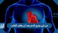 من اين يخرج الدم بعد ان يغادر القلب